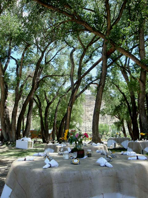 new mexico winery